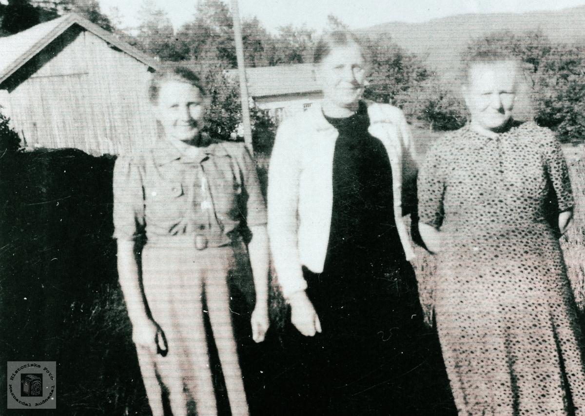 Søstrene Høyland. Grindheim Audnedal.