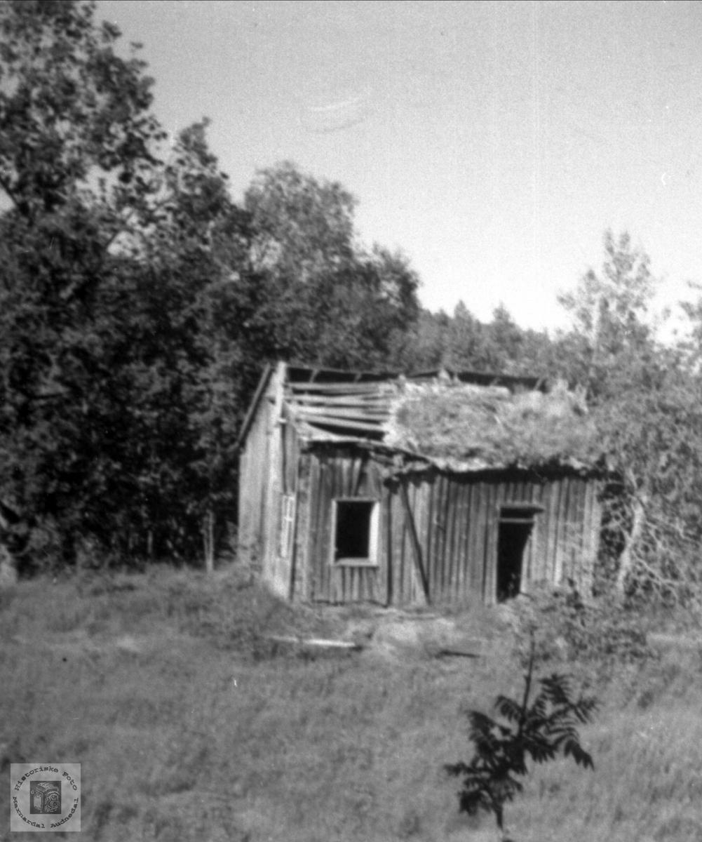 Husmannsplassen Bjenndalen på Røynesdal i Bjelland.