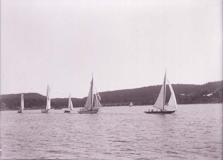 """Enligt text som medföljde bilden: """"Kappsegling-start. Aug 09. Gustavsberg""""."""