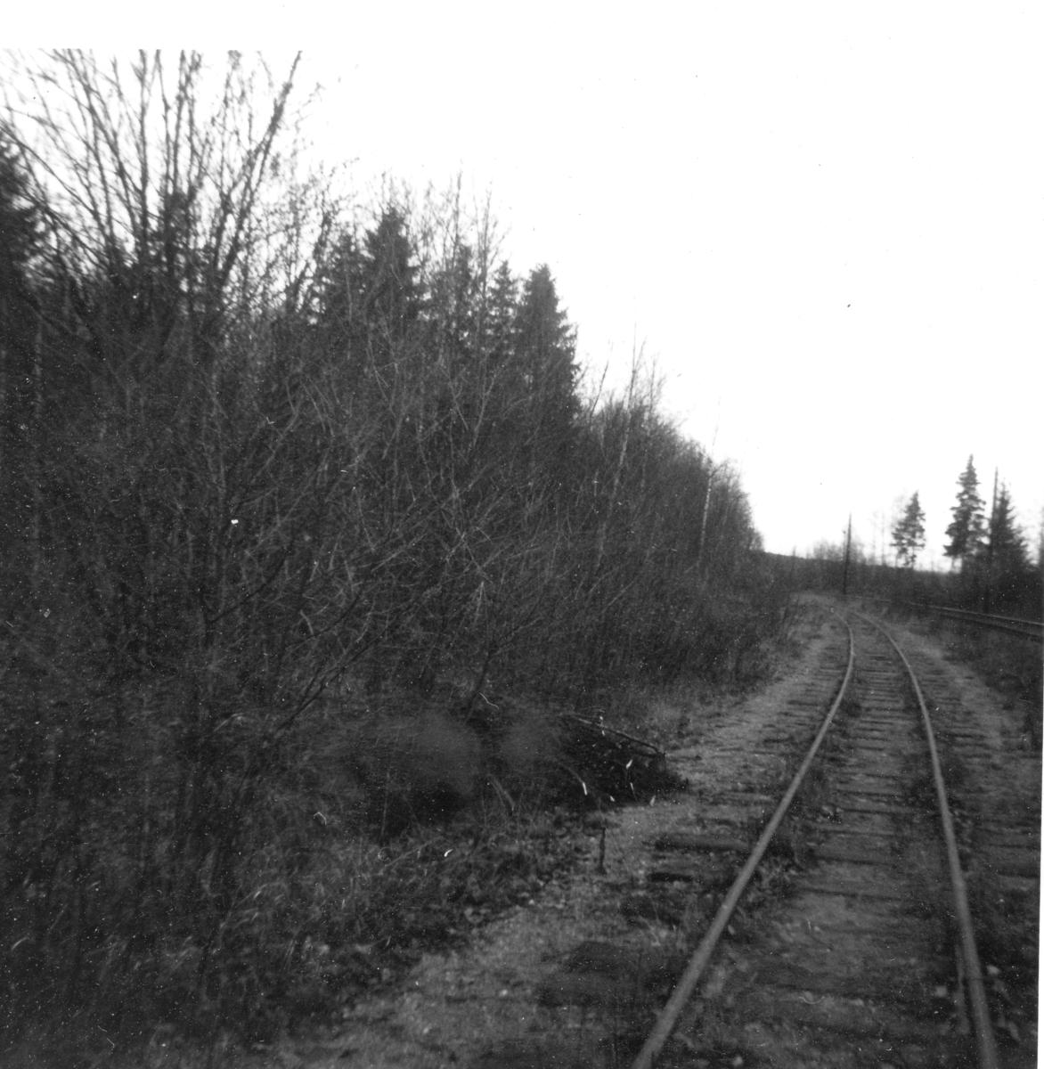 Fra Bingsfoss stasjon våren 1963. Her var det stasjon fra 1896 til 1903. Arbeidet med opprettelse av stasjon for museumsbanen tok til i 1963.