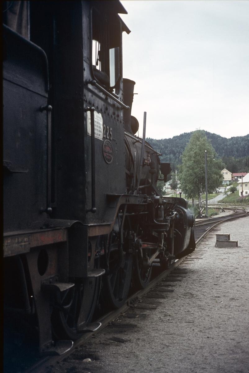Damplok 21b nr. 225 på Rødberg stasjon.