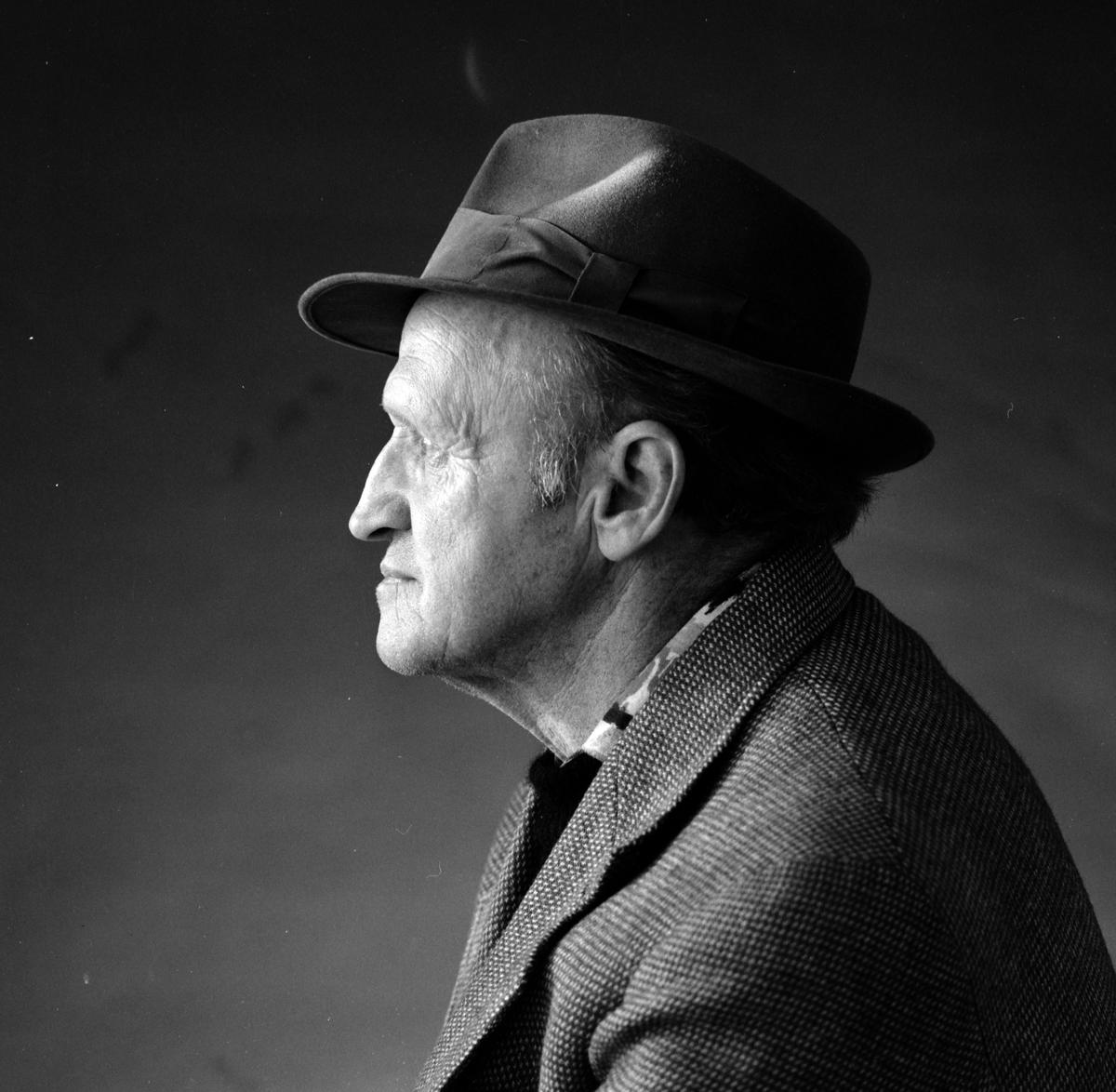 Guttorm P. Haugen, portrett. Forfatter, maler.