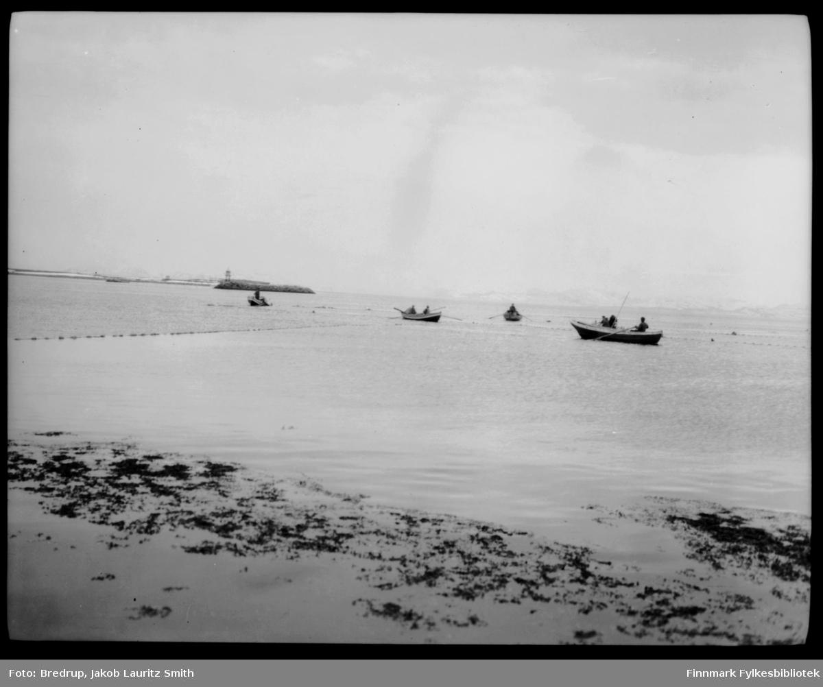 Menn i små robåter skjøtter garnlenker.  Vi ser molo med fyrlykt.  Antakelig tatt like utenfor vestre havn i Vadsø.
