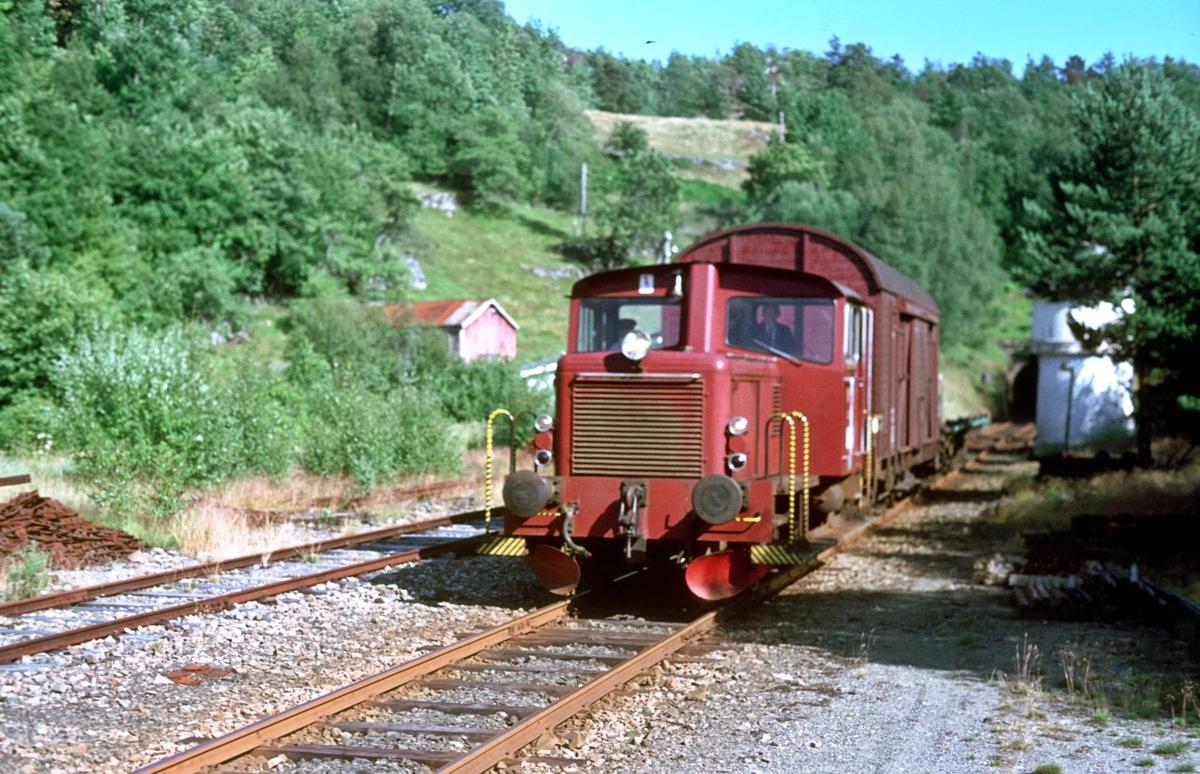 Godstog Flekkefjord - Sira med skd 220c passerer Flikkeid.