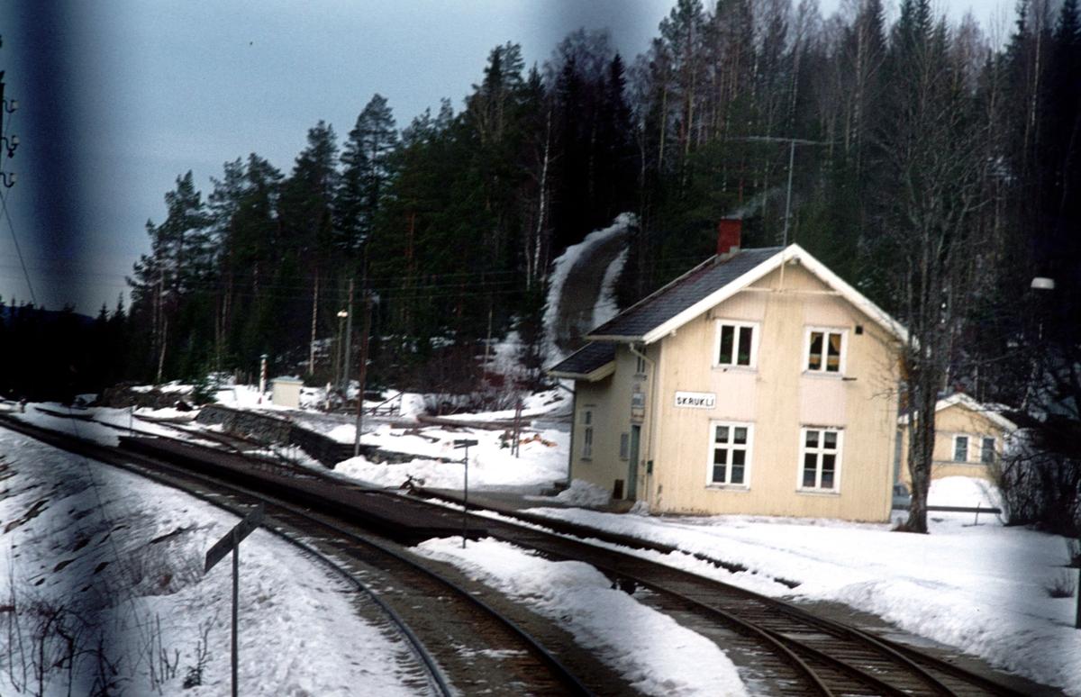 Tog til Fagernes kjører inn på Skrukli stasjon.