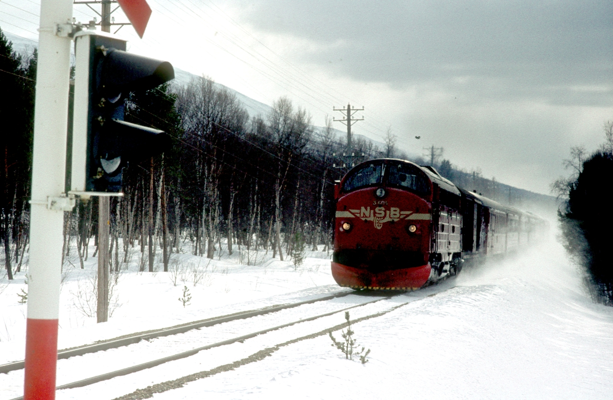 Dagtoget Oslo Ø - Trondheim, hurtigtog 301, ved Røstfossen nord for Os stasjon. Os i Østerdalen. NSB dieselelektrisk Lokomotiv Di 3 605.