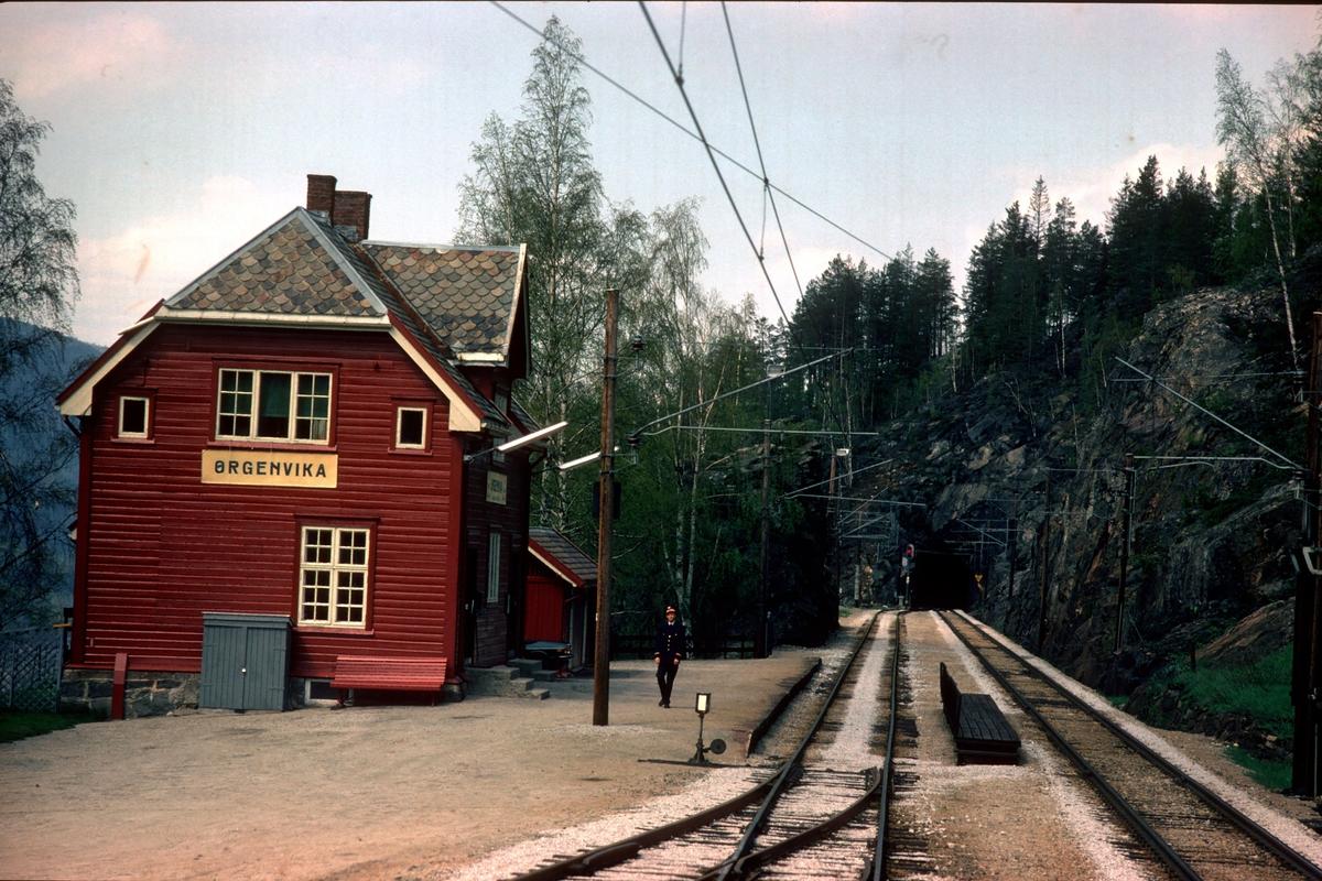 Tog 601 kjører inn på Ørgenvika stasjon.