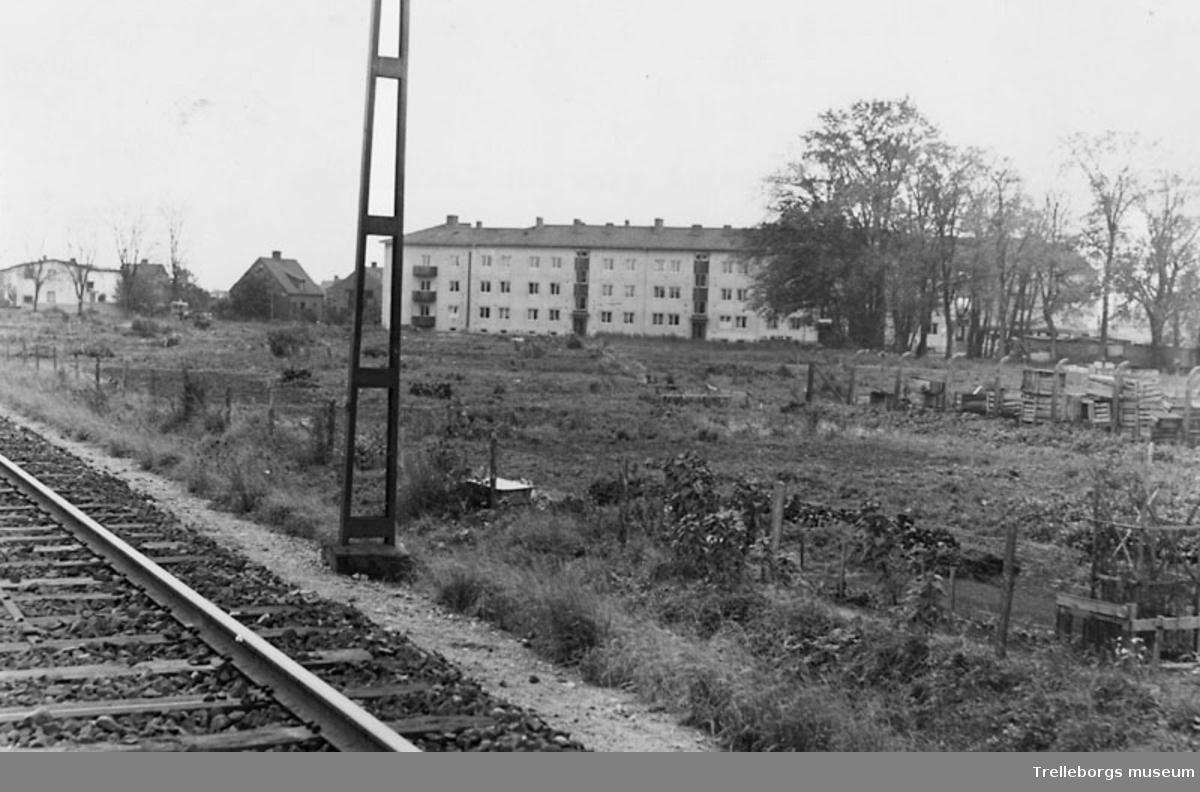 Koloniträdgård på Östra Ringgatan