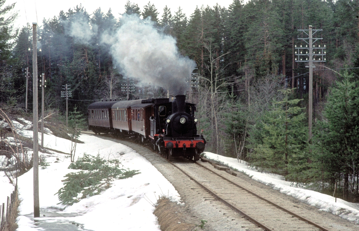 Veterantog på Krøderbanen med damplokomotiv 21b 252.