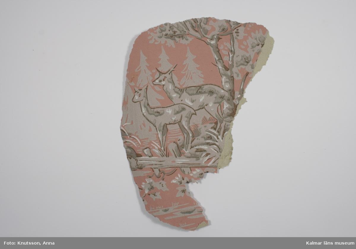 KLM 43838. Tapet. Tittskåpstapet. Av papper. 1 bit. Tapetens bakgrund är i skarpt rosa med motiv av barrträd, lövträd och två hjortar i olika grå nyanser. Datering: Eventuellt nytryck av äldre mönster 1900-tal.