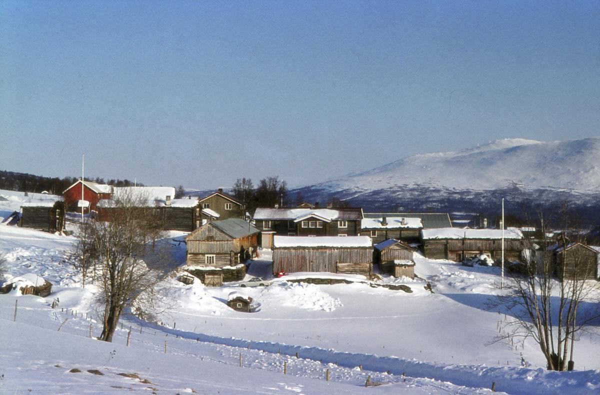 Øvre dalsbygdvei ved Nordgarden. Hummelfjell i bakgrunnen. Dalsbygda, Os i Østerdalen.