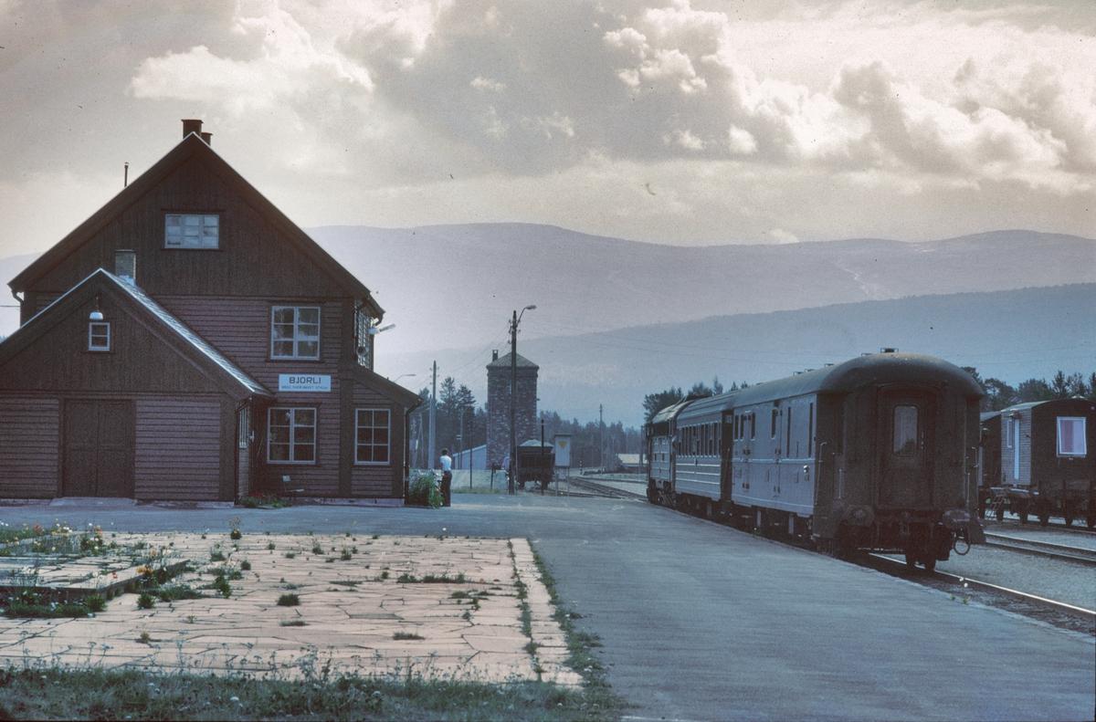 Bjorli stasjon med persontog til Dombås.