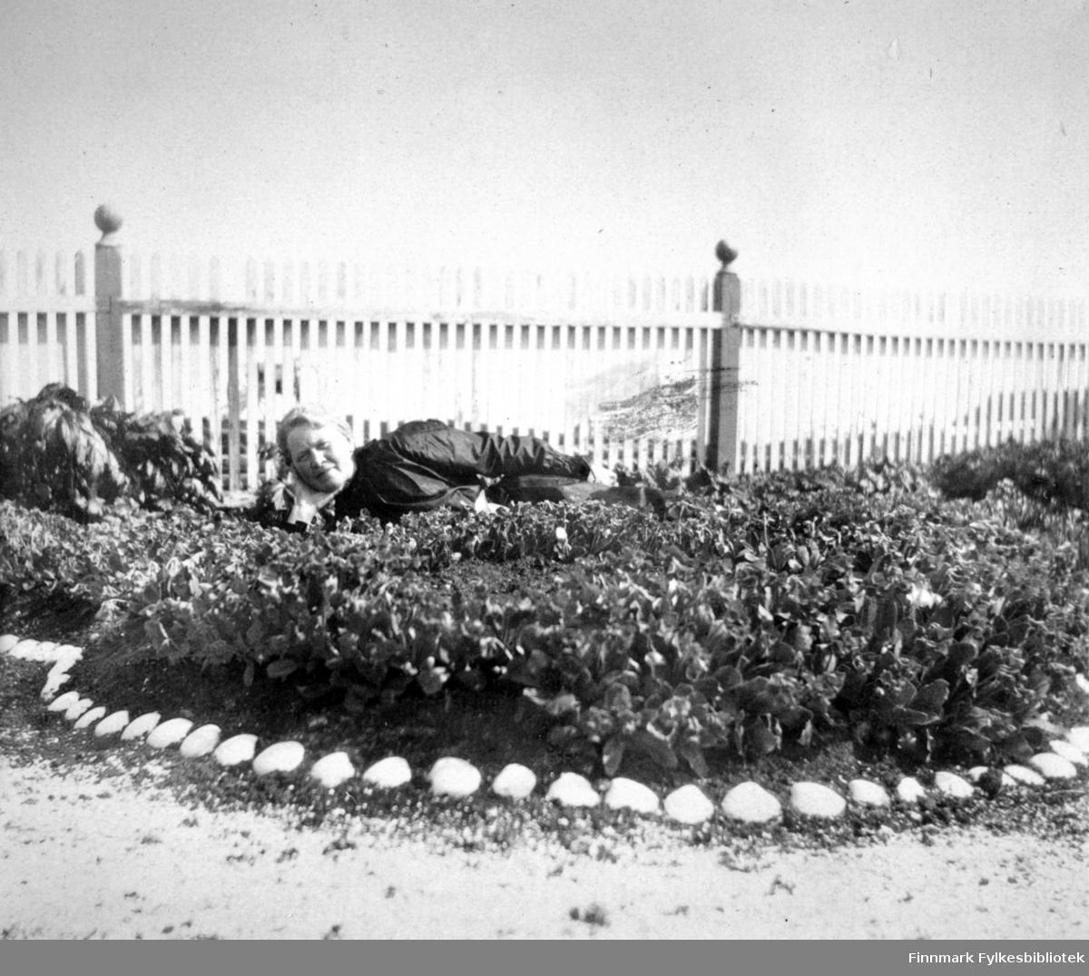En dame med mørke klær ligger i et blomsterbed en solskinnsdag i Arthur og Kirsten Bucks hage. Det er tett i tett med blomster i det og langs kanten er det lagt steiner, muligens skjell, rundt hele bedet. Ved siden av hodet hennes står en ganske stor og fyldig plante. Bakken foran har sand/jord som er strødd med skjellsand. Et hvitmalt stakittgjerde står i bakgrunnen. Det har mørke stolper med kuler på toppen