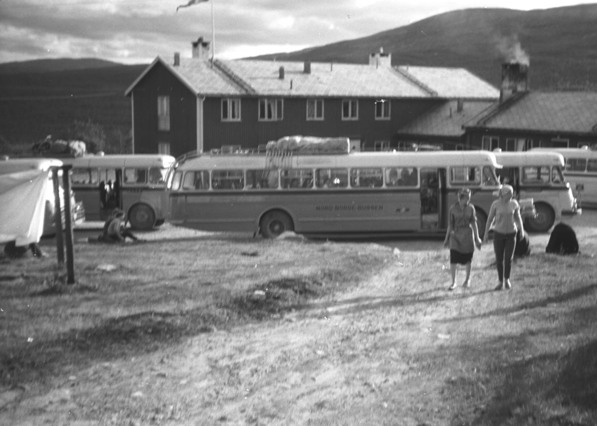 Nord-Norge busser, som kjørte mellom Fauske og Vadsø, har stoppet og folk er ute å strekker på beina. Stedet kan iflg. infomanten være Ifjord. Nord-Norge Bussen var betegenelsen på bussruta som startet i 1941 under navnet Hålogaland-bilruten. Alt året etter ble navnet endret til Nord-Norge Bussen. Ruta fikk fra Kirkenes i nordøst, gjennom Finnmark og Troms, via Narvik til Fauske. I 1942 var Mo i Rana endestopp i sør. Det var dit Nordslandsbanen gikk. Den ble forlenget til Lønsdal i 1947, til Saltdal i 1955 og til Fauske i 1958. Gjennom de neste 30 år var Fauske utgangspunkt for Nord-Norge Bussen. I 1988 forsvant navnet og ruta gikk inn i NOR-WAY Bussekspress. Nord-Norge Bussen hadde matpause-stopp i Rustefjelbma på  Leif Johnsens Gjestgiveri i 1960-årene. Sørgående hadde middagstopp der og kaffepause på Ifjord Gjestgiveri, og motsatt for nordgående. Kveldsmat og overnatting på Lakselv Gjestgiveri i begge retninger. De møttes på Ifjordfjellet der hvor det var mest svinger og smalt. Var en gang med på en nesten-kollisjon.Bildet viser kanskje parkeringsplassen ved gjestgiveriet i Ifjord.