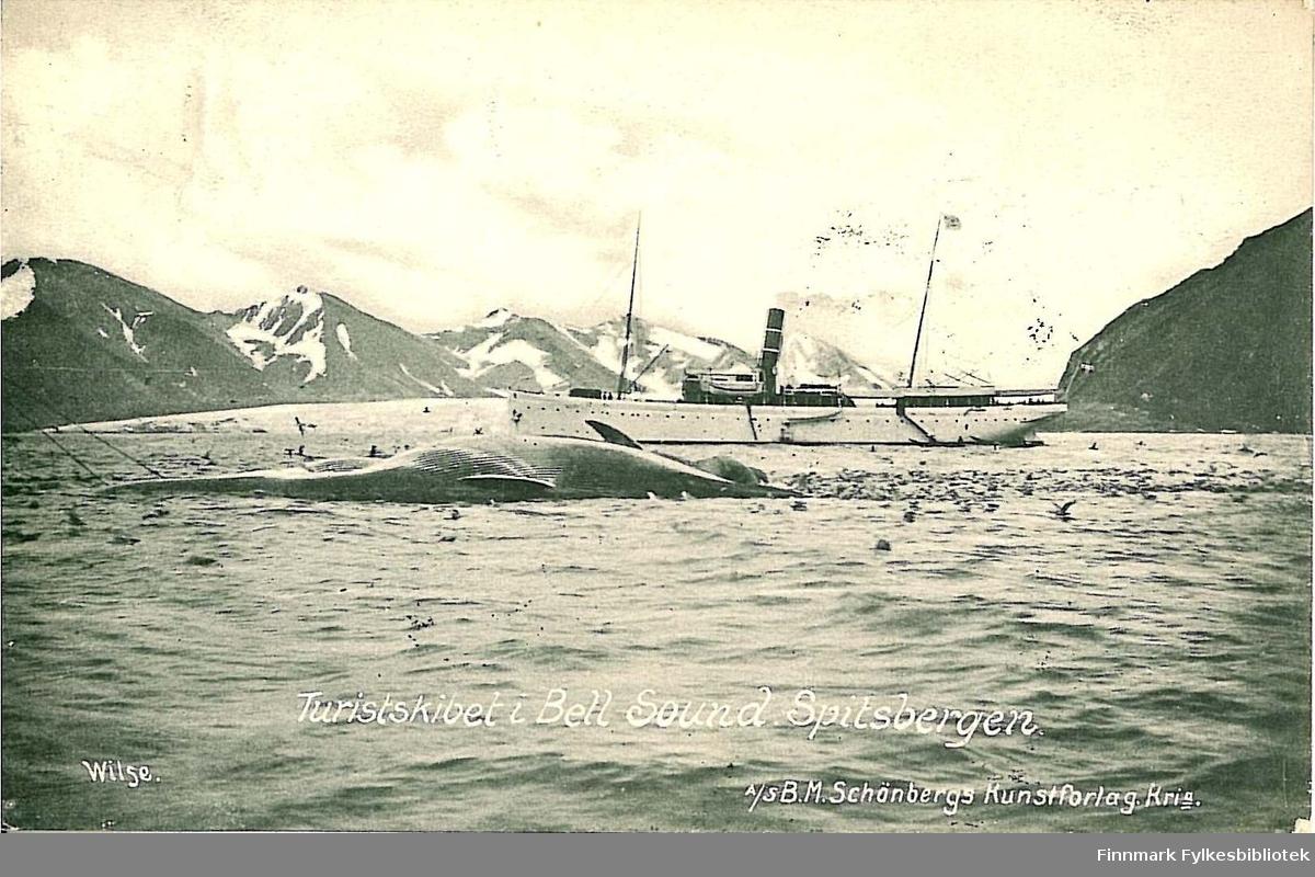 Postkort med motiv fra Spitsbergen med et turistskip i Bell Sound foran en hvalskrott som ligger på sjøen. Kortet er en julehilsen sendt fra Tromsø i 1908 til Arthur Buck m/familie på Hasvik.