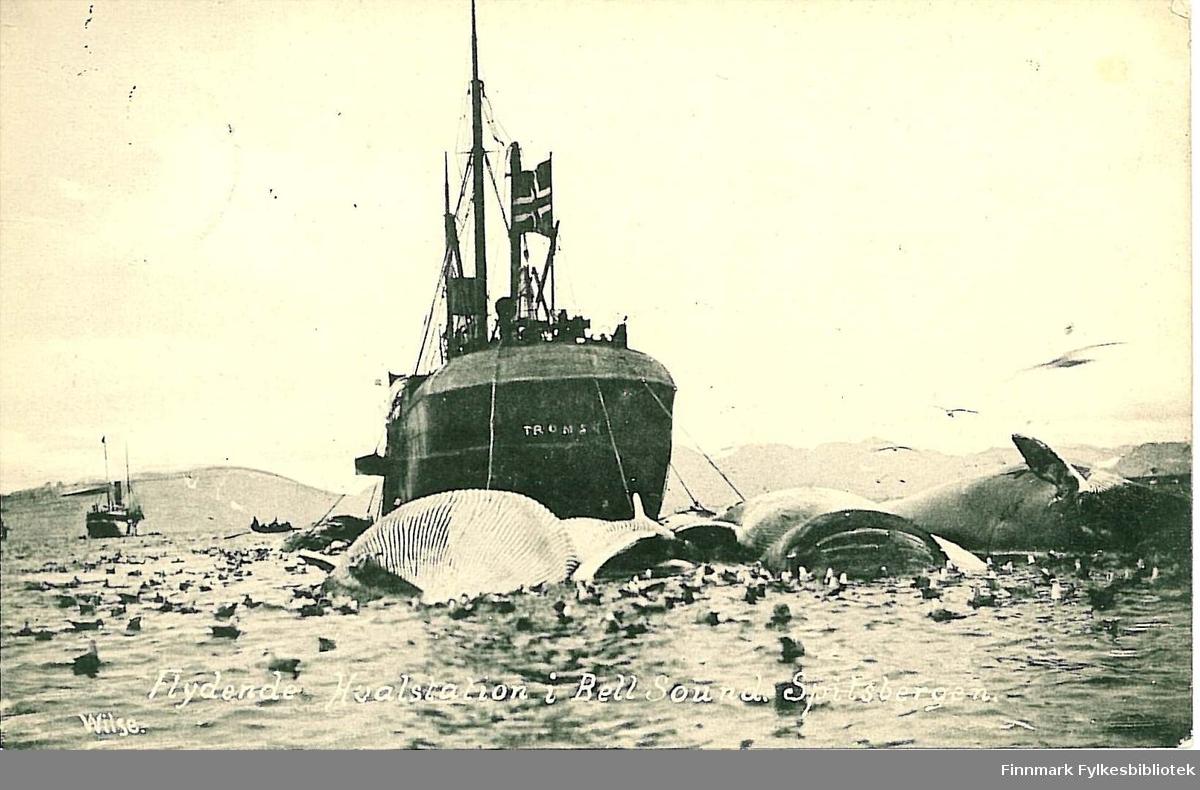 Postkort med motiv av en flytende hvalstasjon i Bell-sundet på Spitsbergen. Postkortet er en nyttårshilsen til Arthur og Kirsten Buck.