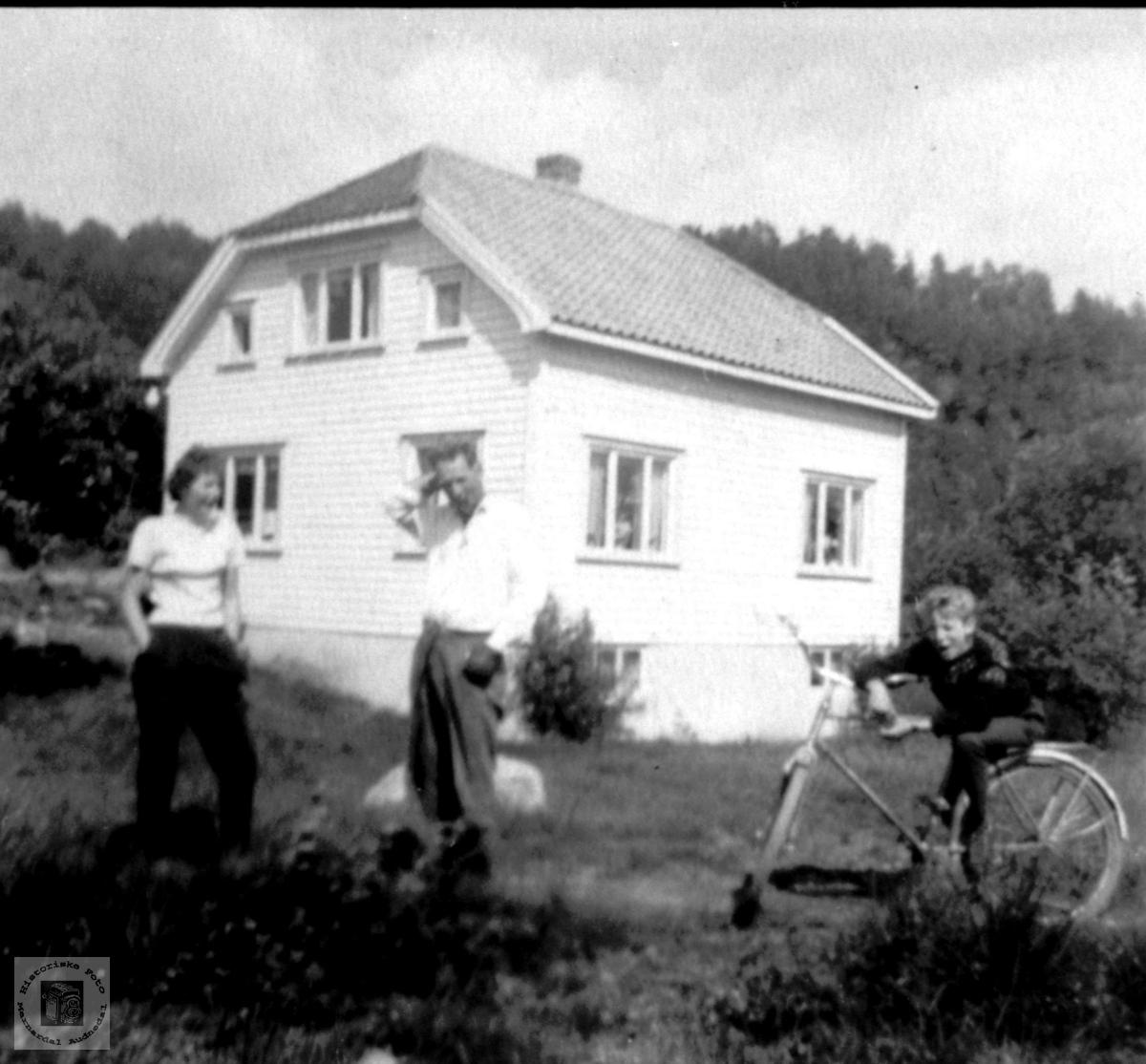 Hus. Bygd 1954, Lian, Øvre Laudal.