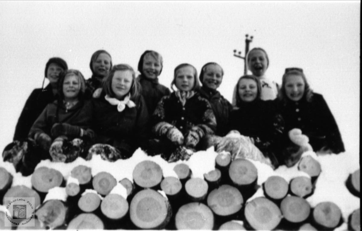 Haraldstad og Rydlende skole på skitur til Skogknuden.