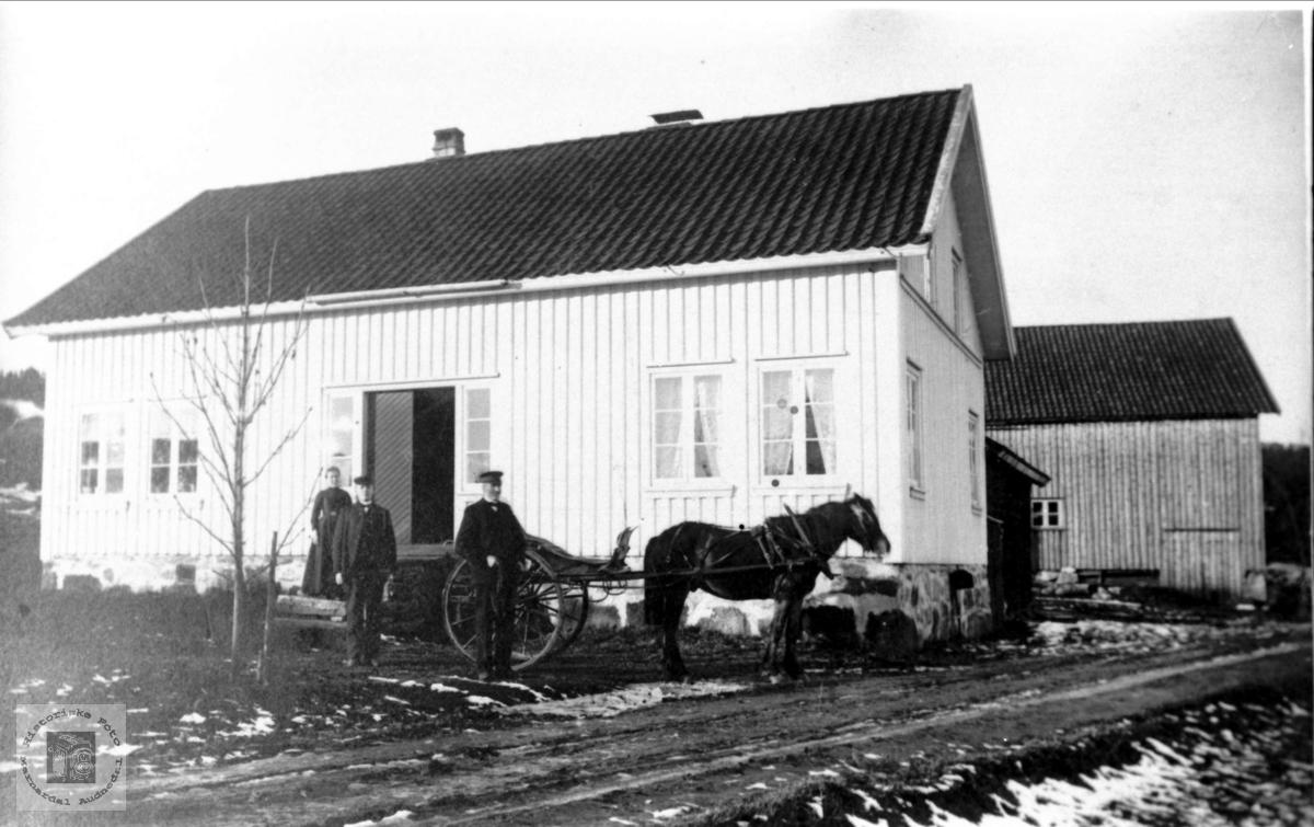 Hest og karjol på tunet Ytre Tuen, Skuland.