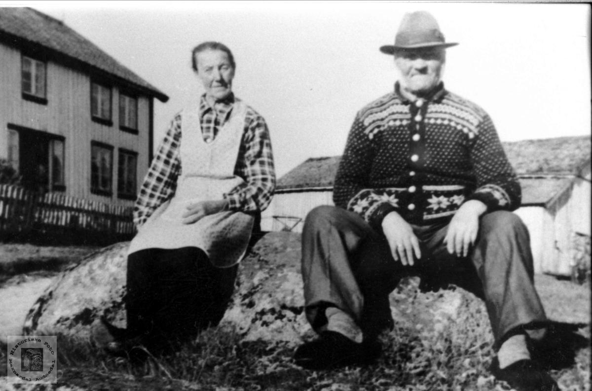 Ekteparet Åse og Ånen Tisland.