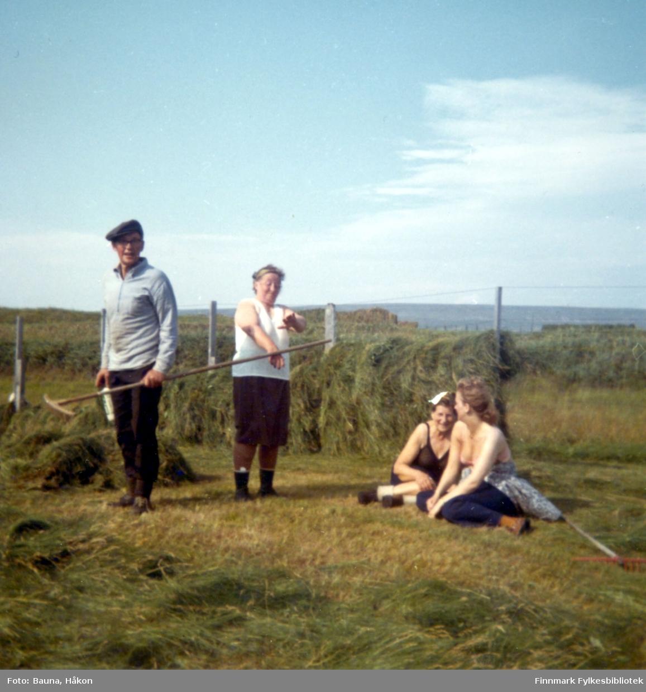 Fire personer jobber med slåttonna i Skallelv. De er, fra venstre: Arnulf Bauna, Gudrun Bauna, Ester Strømsted og Sylvia Bauna.