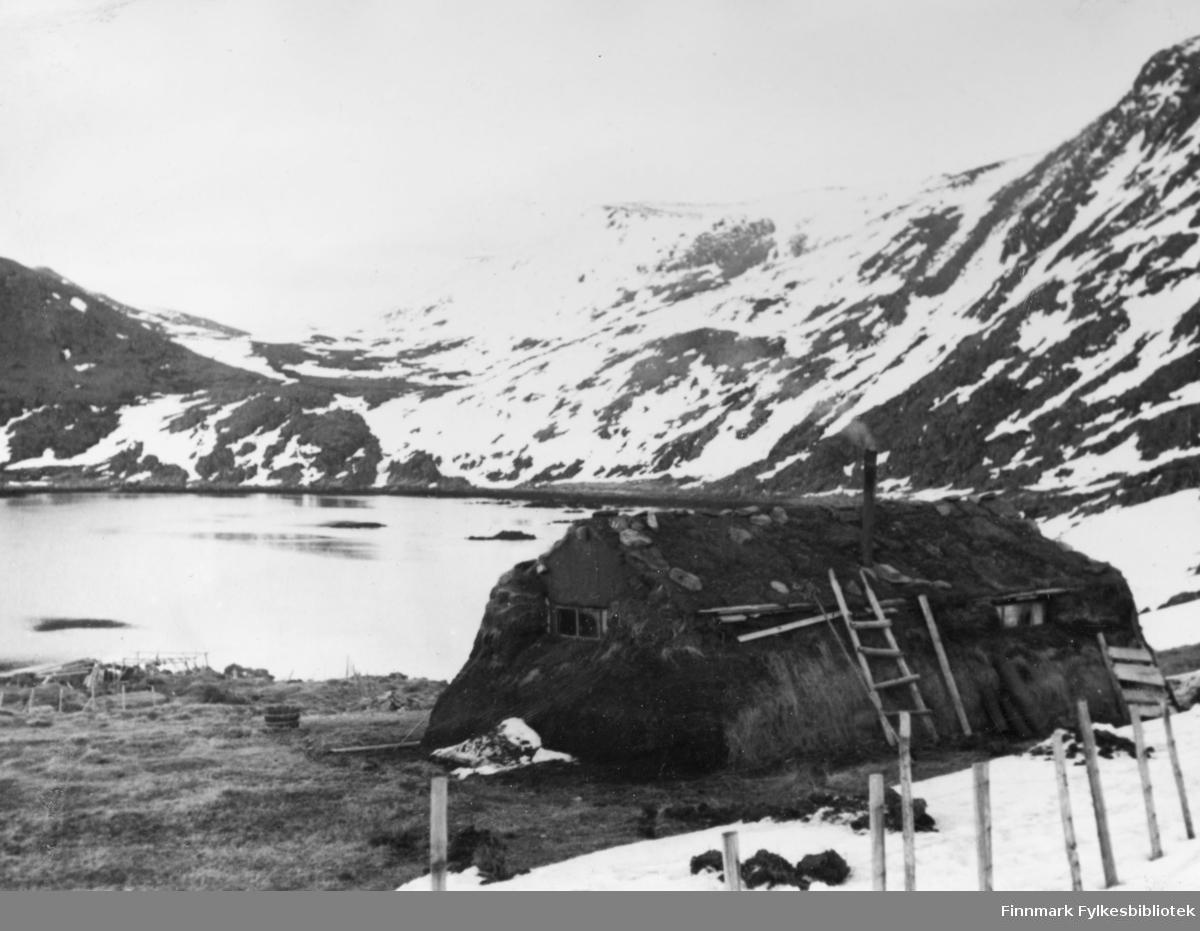 En gamme i Bekkarfjord i 1947.