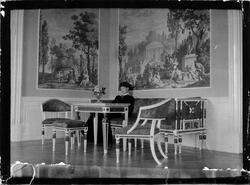 Stora salongen i Nolhaga med de franska tapeterna tryckta 18