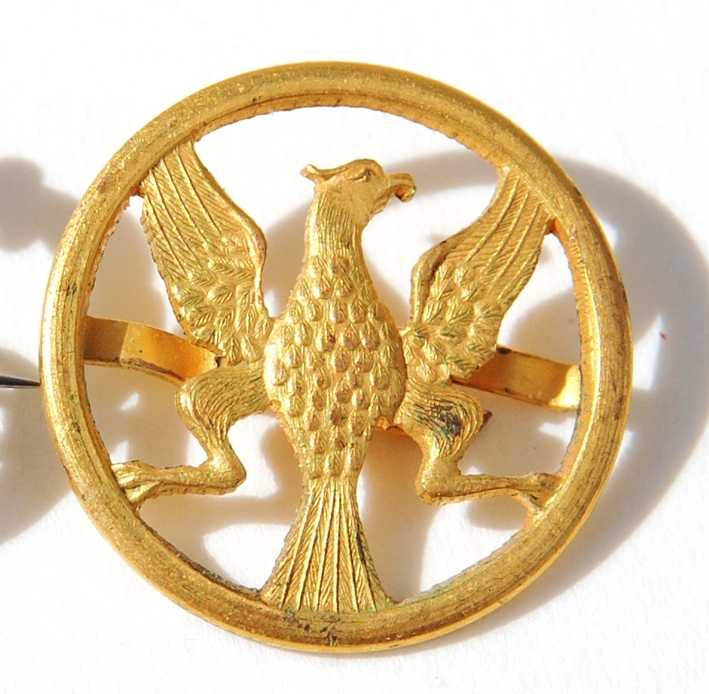 Cirkelformad brosch i guldmetall. Örn stående inuti med vingarna utbredda. 2 st stift ca 1 cm lång på baksidan för fastsättning.