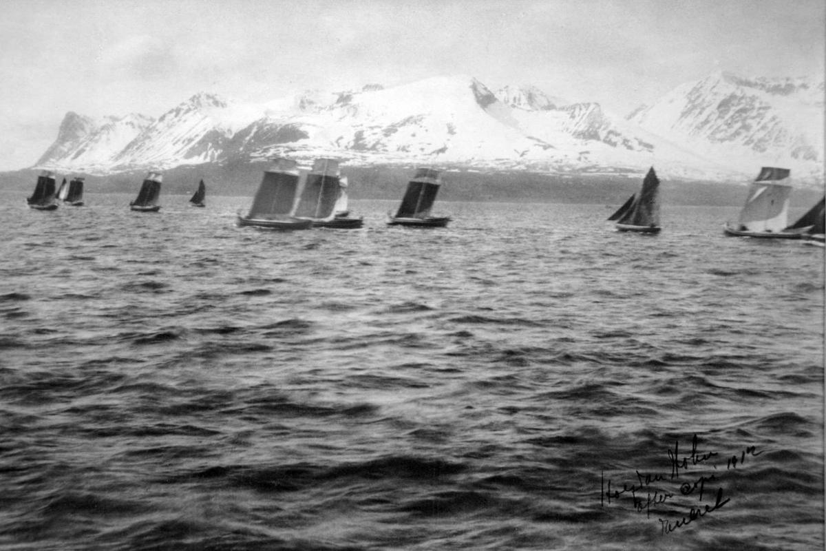 Nordlandsbåter på Vågsfjorden.