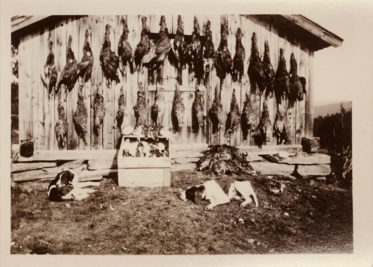 Fra Fossgruva i Rabblia 1934