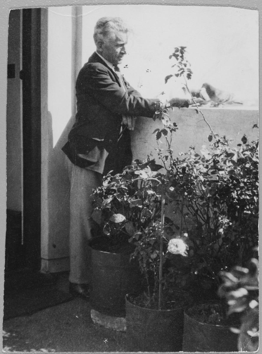 """Wittrup med duene """"Jugs"""" og """"Maggie"""" i Johannesburg, 1933."""
