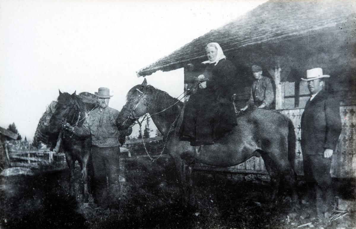 Bilde fra Hvervens gårds seter, Løsset sæter, Løsset seter i Åmot kommune. Setra ble også kalt Løsset Nordre, og Nordsætra. Den ble bygd i 1876. Fra venstre: Husmann Nils O Hagen (1863-1955), han holder 2 hester. Sittende på hest: Oline Gjestvang ( 17.12.1849-14.04.1910). Bak oppe på svalgangen står sønnen, Peter Gjestvang Jr. (01.01.1888-08.09.1957). Helt til høyre, med hvit hatt, Peter Gjestvang (30.11.1850-01.04.1908), eier av Hverven Gård i Ottestad, Stange.