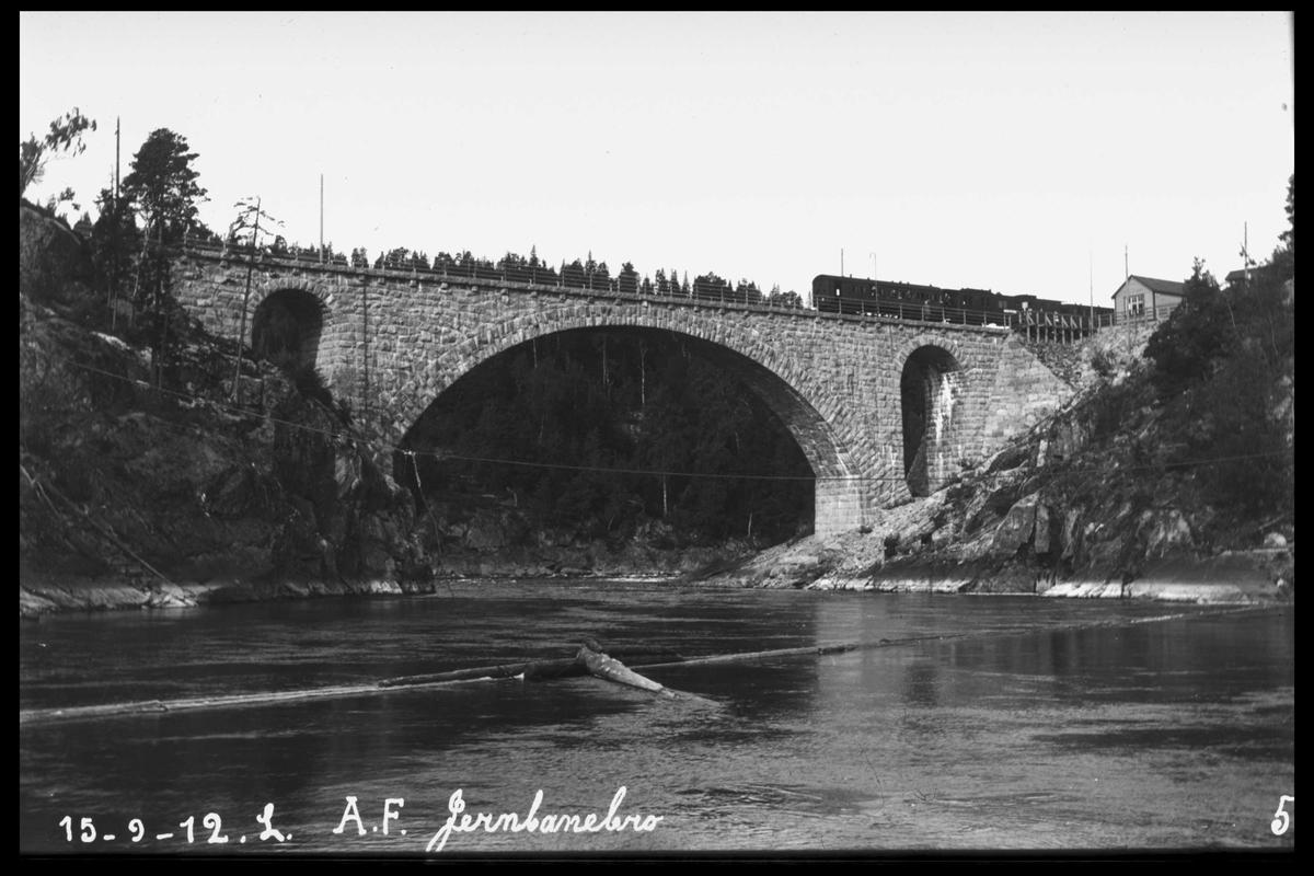 Arendal Fossekompani i begynnelsen av 1900-tallet CD merket 0469, Bilde: 45 Sted: Bøylefoss Beskrivelse: Brua og tog på stasjonen