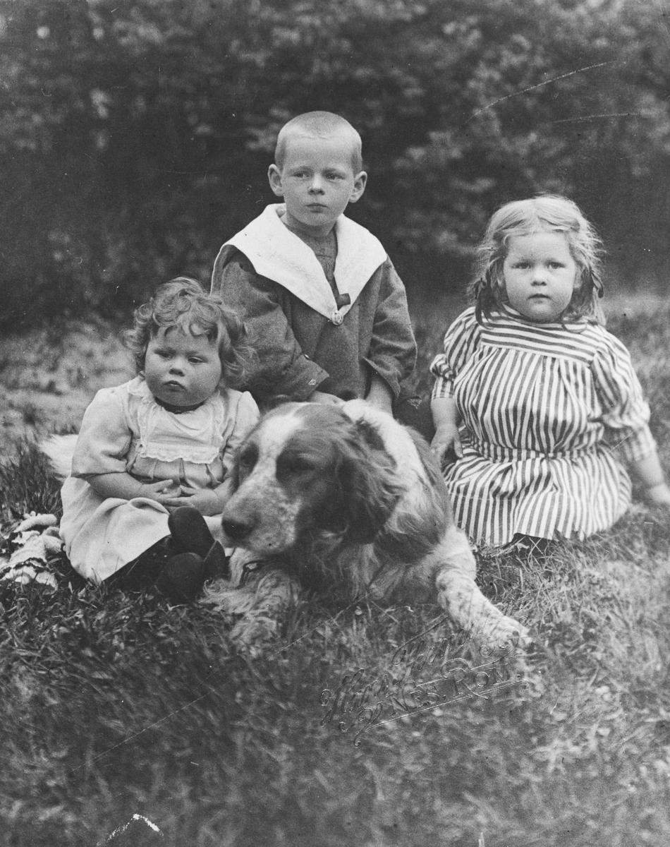 3 søsken med hund