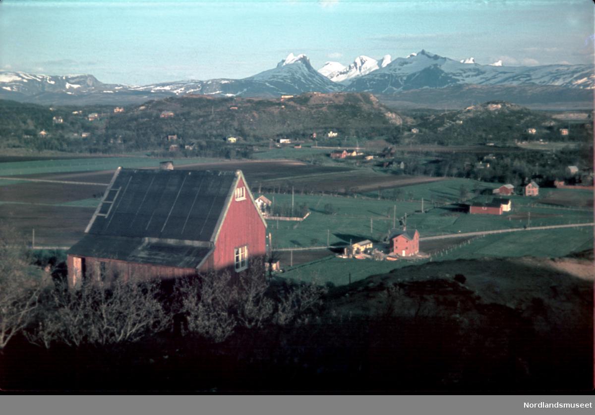 Rönvik