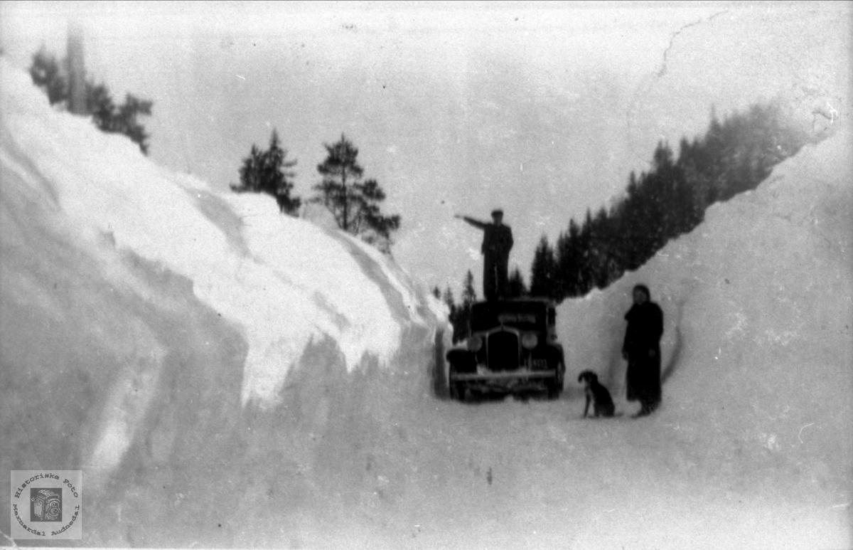 Vinterveg på Kolandsheia, Bjelland