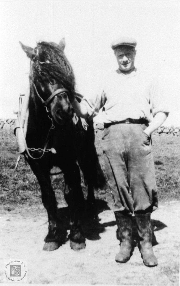 Bonde Alv Tjomsland med hesten, Laudal.