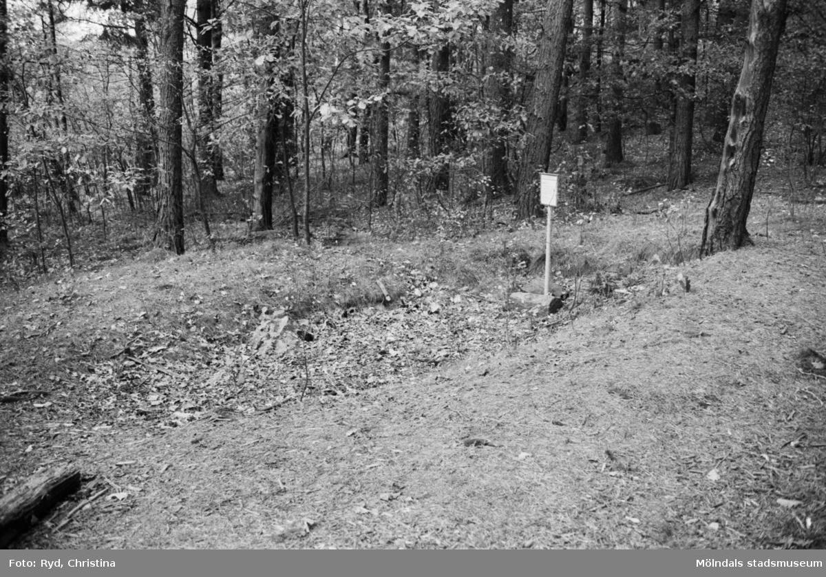 """Denna hällkista på Safjället eller Toltorpsberget (ovanför Bifrostgatan) är plundrad och hällarna är borta. Nu återstår endast en fördjupning i marken strax öster om Indiandammen (den sydligaste av de tre dammarna på Safjället). """"Hällkistan"""" blev fotograferad 30/10 1991. R 22, hällkista."""
