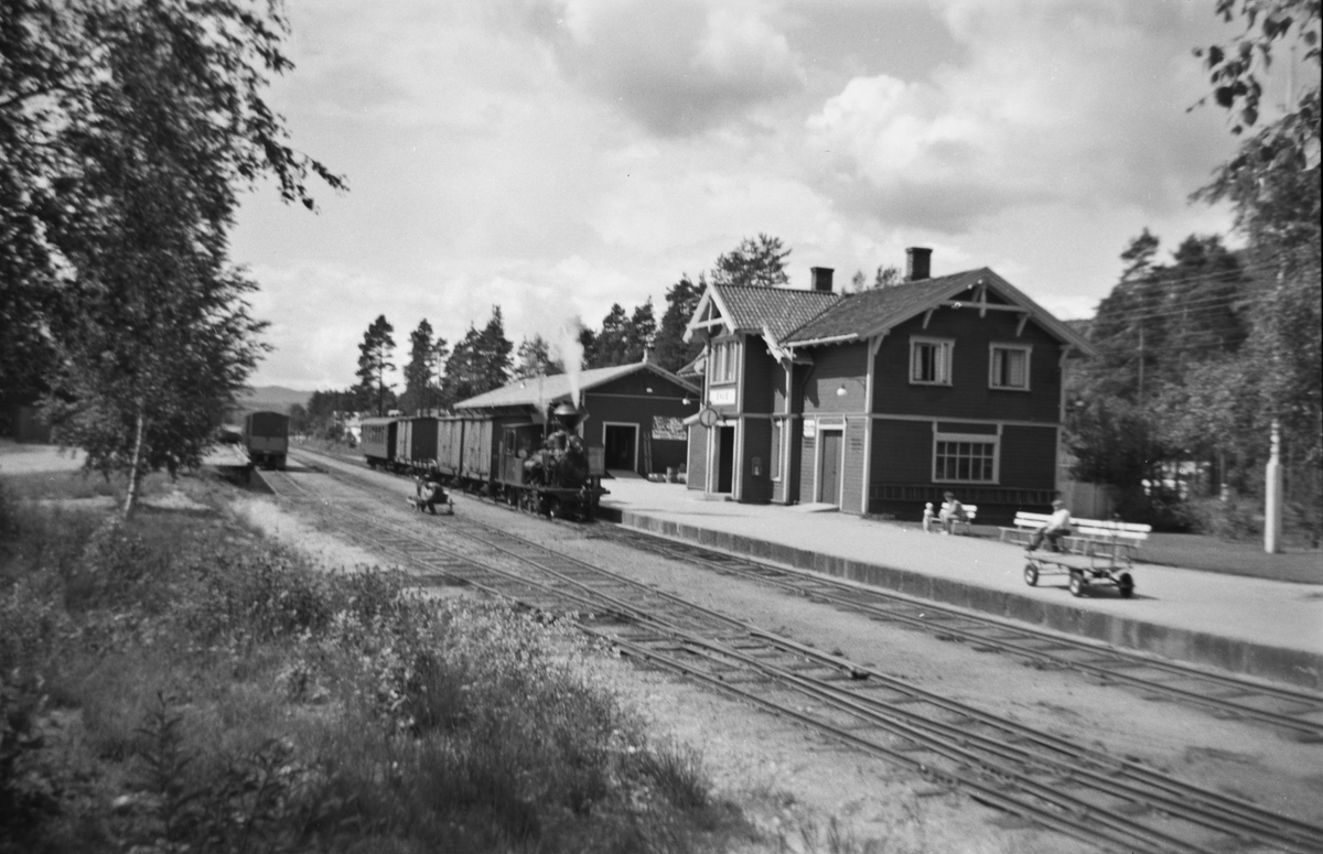 Blandet tog ankommer Evje stasjon på Setesdalsbanen