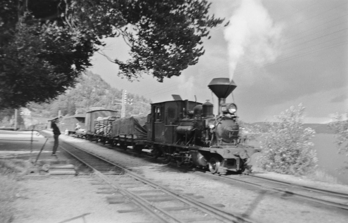 Blandet tog på Hægeland stasjon