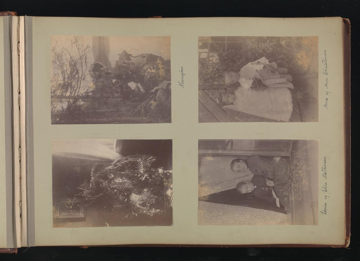 Albumside 8 av grågrønn kartong med fire bilder: 1) ungdommer ved Alunsjøen 2) Anna og Arne Christensen 3) stueplante 4) Louise og Elise Mathiesen.