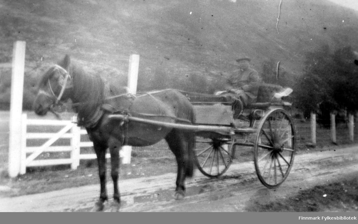 Nils Pavelsen. Postskyssen i Tana. Sommeren 1917.