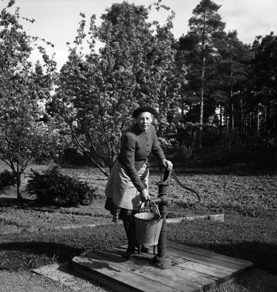 Hemlingby vattenledningsfrågan. Fru Vallin vid pumpen. Den 31 maj 1950