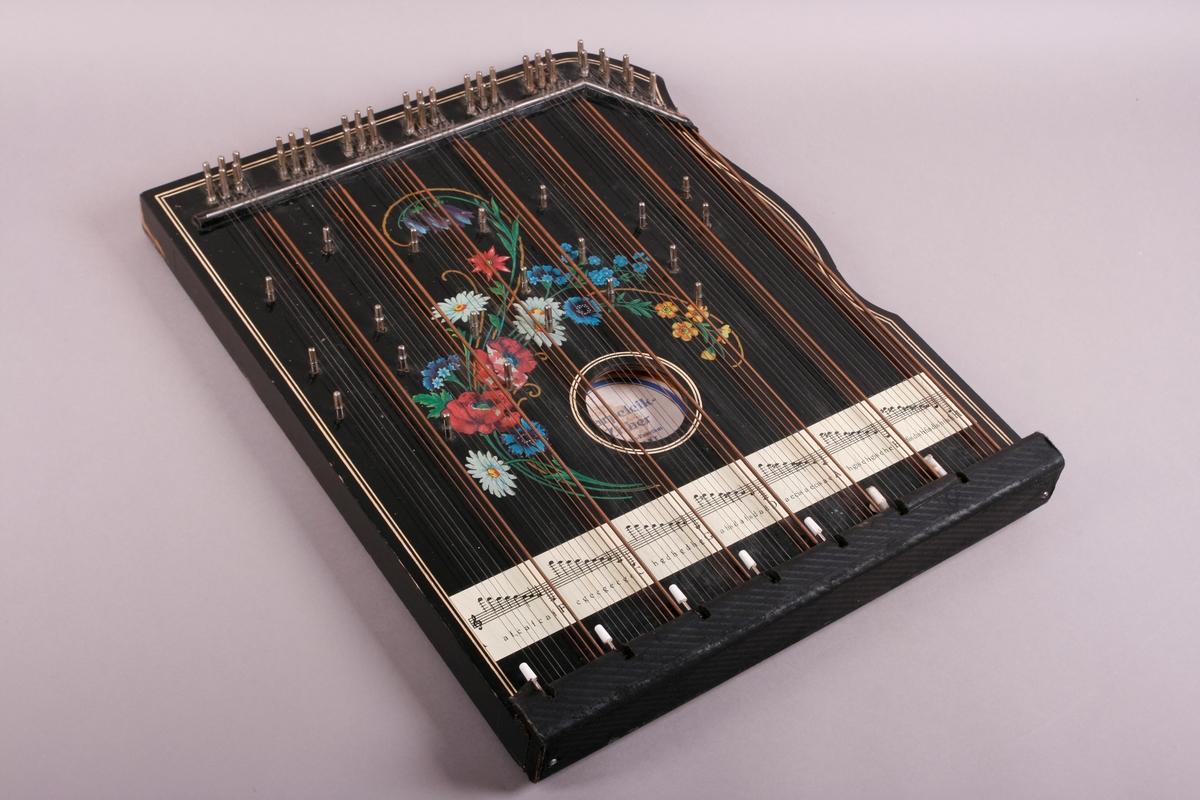 Rektangulær korpus i svartmalt tre. Buet sarg på høyre side, sett forfra. Et anheng er påskrudd nederst på instrumentet, og beskytter strengefestet. Dekor i form av to paralelle linjer går langs ytterkanten på lokket. Stemmestokk og stol i øvre kant. Blomstermotiv på lokket, over lydhullet. Etikett inne i lydhullet; blå bokstaver på hvitt papir.   Citeren har sju akkorder: F, C, G, D, A, E, H. Totalt 64 strenger. Tersen i hver akkord kan endres ved hjelp av en spake som kan løftes opp. Dermed kan man spille i både dur og moll.