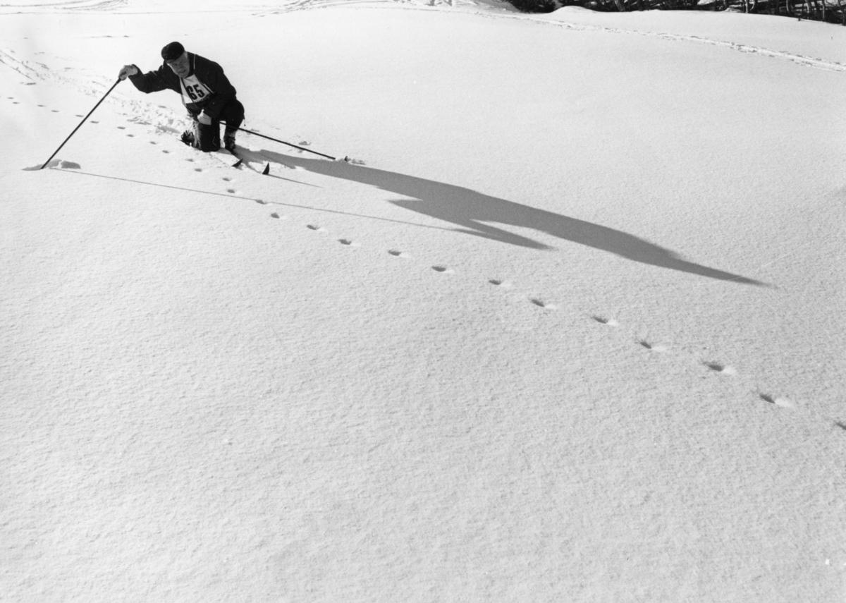 Kjell Aukrust på ski. Skjæringfjell, februar 1972