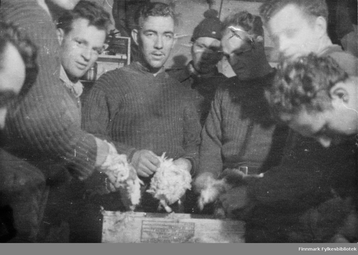 """Soldater fra tredje tropp i 2. Bergkompani sper på kostholdet med å rense ryper. """"Rypene smakte kan  dere tru"""" skriver soldat Magnar Blomli (ref. album tilhørende Rune Rautios arkiv).   En av mennene som er merket med et kryss er Ole Bergstad-Olsen fra Sandar (Sandefjord).  Han var far til Alf Nestor Bergstad som også er giver av denne fotosamlingen. Den første tiden fikk de norske soldatene suppe og grovt russisk brød av russerne. Etter kort tid var imidlertid 2.Bergkompani alene i Finnmark, russerne stoppet ved Tana elv. Det var små rasjoner og spartanske forhold, forteller Arne Arnesen. """"Vi fant en komfyr...den var viktig, da all mat ble tilbredt i hver enkelt gruppe. Vi stekte lompe og kokte grøt av de samme ingrediensene: sammalt hvete. Ja, vi brukte også knust havre som vi fant, den var nok beregnet på de tyske hestene. Alt som het mat ble tatt godt vare på, for vi manglet de mest elementære ting, som brød, poteter, kjøtt osv. Rasjonene var små, og det var meget vanskelig å stå for utdelingen av det vesle vi hadde....Arnensen avslutter med: Men jeg har aldri likt grøt etter den vinteren.""""  Bildeserien """"Frigjøringen av Finnmark 1944-45"""" viser et unikt materiale fotografert av soldater i Den Norske Brigade, 2. Bergkompani under deres oppdrag """"Frigjøringen av Finnmark"""" som kom i stand under dekknavn """"Øvelse Crofter"""". Fakta rundt dette bildematerialet illustrerer iflg. vår informant, George Bratli: """"2.Bergkompani, tilhørende Den Norske Brigade i Skottland,  reiste fra Skottland 30. oktober 1944 med krysseren «Berwick» til Scapa Flow på Orkenøyene for å slutte seg til en større konvoi som skulle være med til Norge. Om bord på andre skip var det mange russiske krigsfanger som hadde vært på tysk side og som nå ble sendt hjem.  2.Bergkompani forlot havn 1.november 1944 og kom til Murmansk, Sovjetunionen, 6. november 1944.  De ble her lastet om og fraktet til Petsamo, Sovjetunionen, hvor de ankommer 11.november 1944.  Kompaniet reiser så til Sandnes utenfor Kirkenes og"""