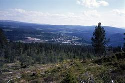 Utsikt over Berkåk sentrum.