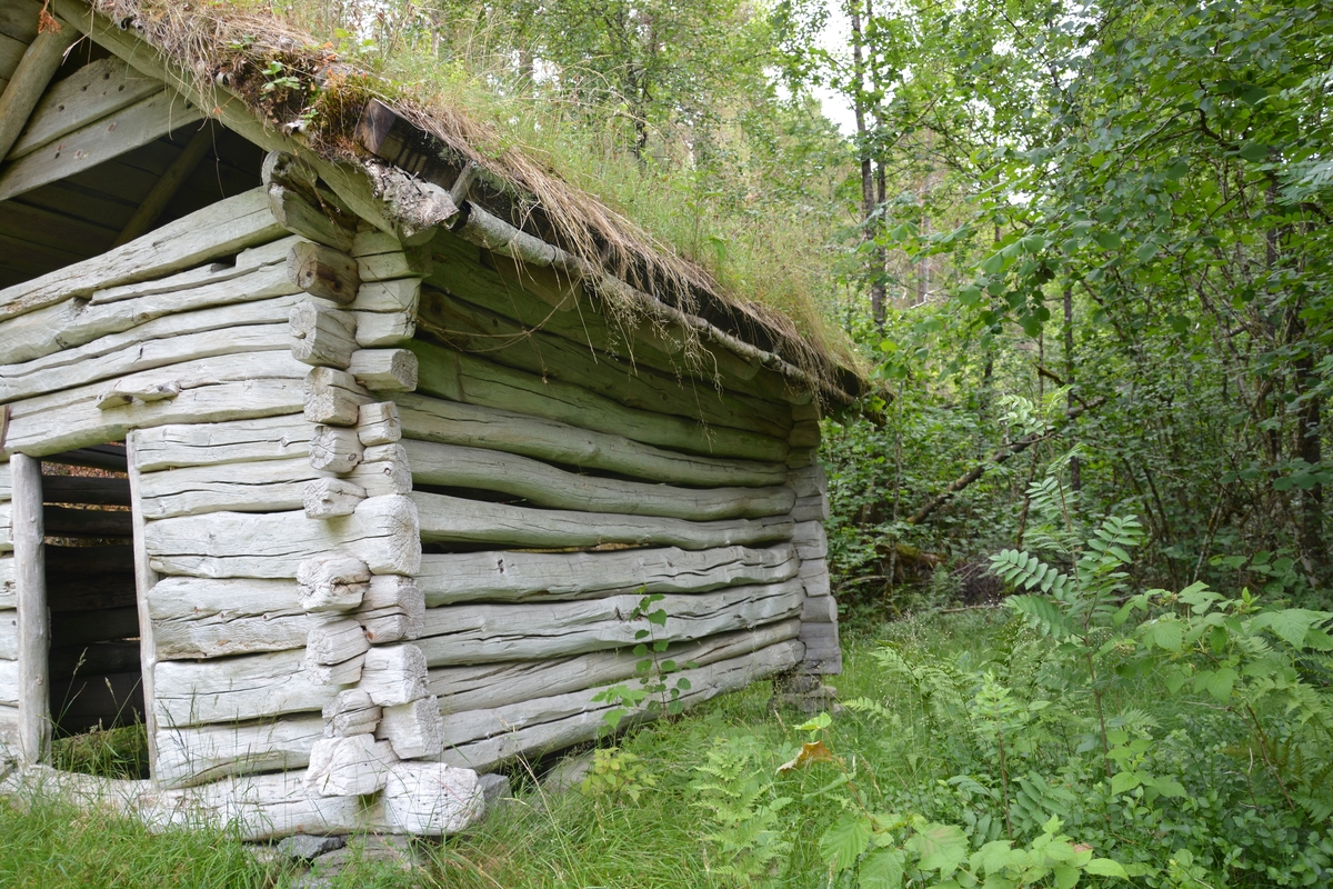 Tømra bygning (1 rom) med torvtak. Ope ved røstet. Dør i gavlvegg med loke og hengslar av tre.
