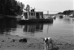 Båtvrak ved Bygdøy Sjøbad.