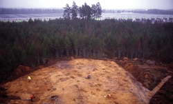 Översikt av gravfältet RAÄ Barnarp 171, L1971:1158 på Torsvi